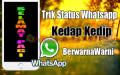 Cara Membuat Status Whatsapp Kedap Kedip